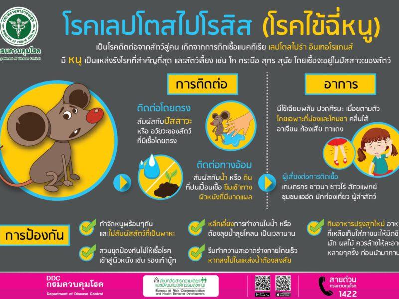 สคร. 5 ราชบุรี เตือนประชาชนช่วงนี้ฝนตกหลายพื้นที่ ระวังป่วยด้วยโรคไข้ฉี่หนู